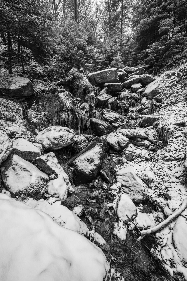 Fototour Harz