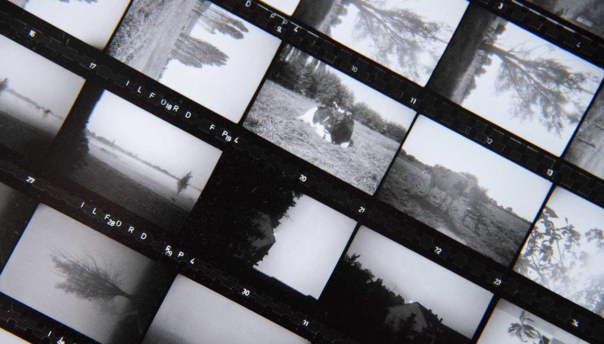 Kontaktabzug von meinem ersten Film