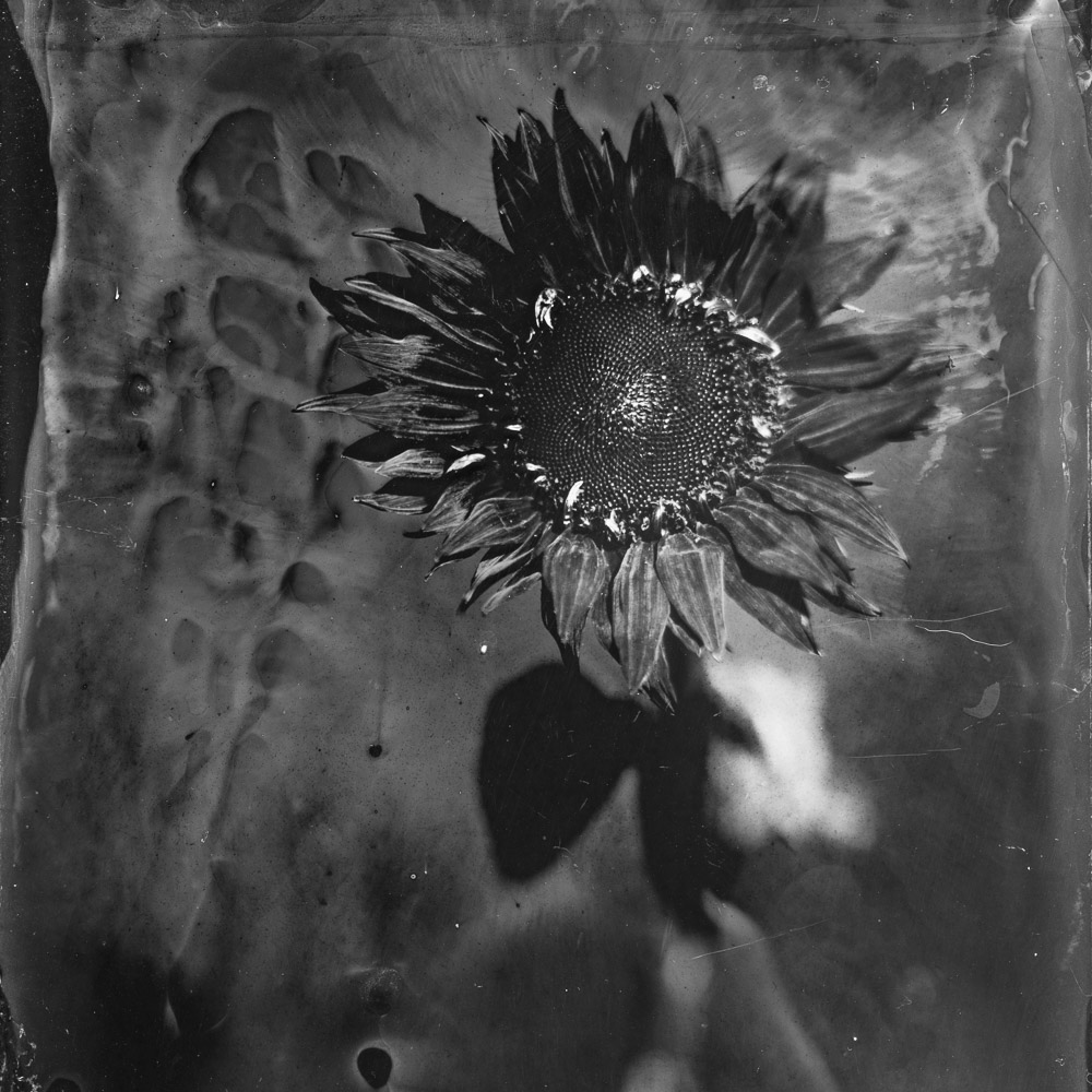 World Wetplate Day